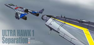 Hawk1Separ.jpg