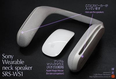SonySRS_WS1_Speaker.jpg