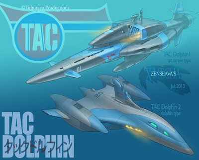 TAC_Dolphin.jpg