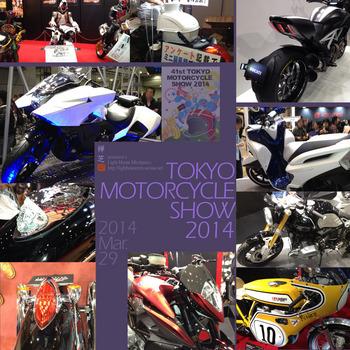 TMCS2014.jpg